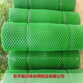 白色养殖网 pp塑料网 12mm塑料网厂家