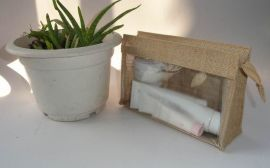 环保化妆品包(LY-2012208)