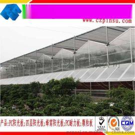 淮安蜂窝阳光板温室大棚阳光板