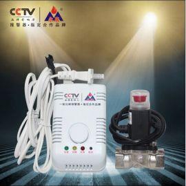 一氧化碳泄漏报警器厂家批发YK-CO/HF
