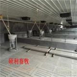 養豬自動喂料機豬場自動化上料系統工作流程介紹