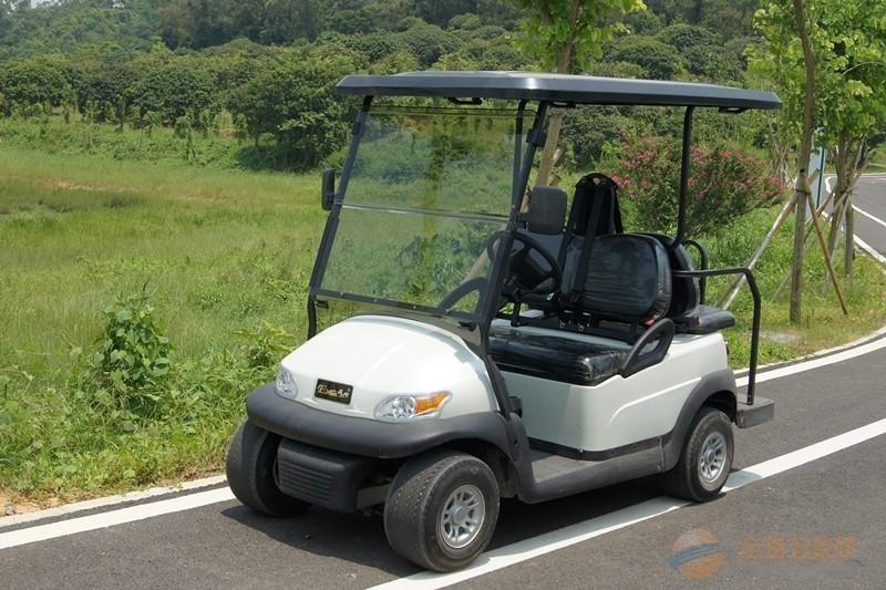 鑫躍牌兩座電動高爾夫撿球車A1S2