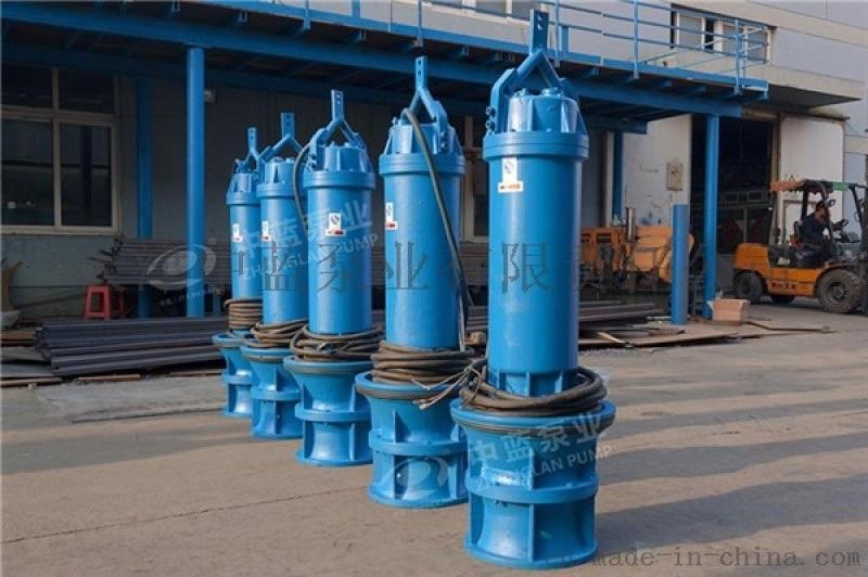 水利工程  雪橇式轴流泵厂家