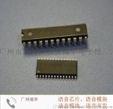 OTP語音晶片,智慧語音晶片,語音晶片模組