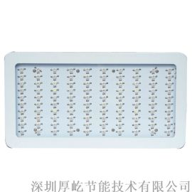 深圳led植物灯 迷你300W红蓝多肉植物补光灯