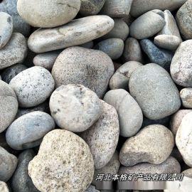 本格大量供应天然鹅卵石、景观鹅卵石、水处理鹅卵石