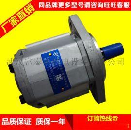 合肥长源液压齿轮泵CBHT-F325平左法兰