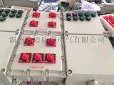 BXD52-YP防爆動力電磁起動配電箱(兩地控制)