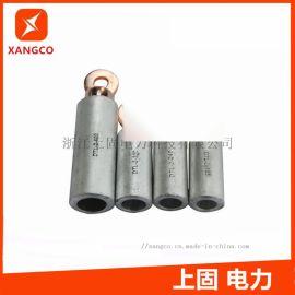DTL-2-120铜铝接线端子铜铝接线鼻子 A级