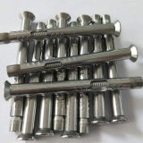 304不鏽鋼膨脹螺絲平/沉頭內六角 內置式膨脹螺栓 拉爆M6/8/10/12