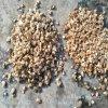 供应各种规格远红外麦饭石陶瓷球 多肉植物用彩色陶粒