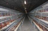 蛋鸡笼厂家地址 河南蛋鸡笼 银星蛋鸡养殖设备