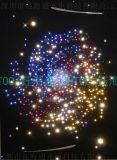 滿天星 星空 亮浮標 光纖燈 導光線2.5MM