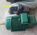 繞線轉子電動機,YZR355L1-10/110KW非同步電動機,佳木斯宏泰,單出軸電機,380V交流電動機