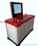 國產自產自銷青島路博62系列綜合煙氣分析儀