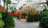 江苏南京建设生态餐厅 生态酒店 花园餐厅哪里建的好