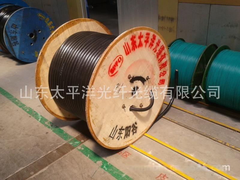 gyta53 光纖皮線光纜 單模12芯鎧裝室外光纜 山東廠家
