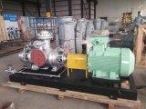 ,螺杆泵,双螺杆泵厂家,双螺杆泵,专业螺杆泵