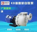 国宝氟塑料自吸泵 自吸能力强 值得你选择