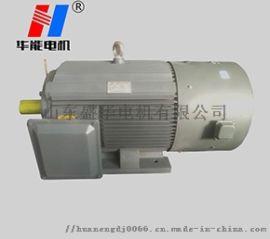 山东电机生产厂家YE2-355L-6大功率电机