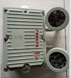 BAJ52防爆应急灯丨 LED双头防爆应急灯