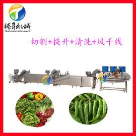 定制不锈钢蔬菜水果切割清洗风干生产线