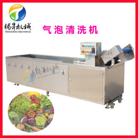 果蔬清洗机 冬瓜条金瓜丝清洗机
