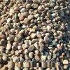 鋪路鵝卵石 變壓器鵝卵石 污水處理鵝卵石河卵石