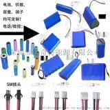24V36V48V60V72V三元锂电池OEM定制