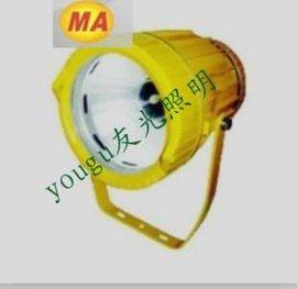 DGS70 127B(A)矿用隔爆型投光灯