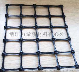浙江力量厂家直销工程建筑建材塑料土工格栅
