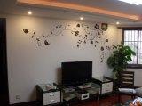 南京墙绘创意电视背景墙彩绘CH-01 手绘壁画