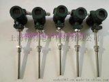 插入式液位变送器XY-136P