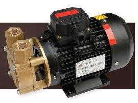 WD 热水/热油旋涡泵