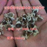 广西南宁辣木籽,玉林/百色/辣木籽供应商
