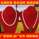 北海珍珠项链现场加工现杀河蚌 地摊跑江湖热卖小饰品天然珍珠首饰批发