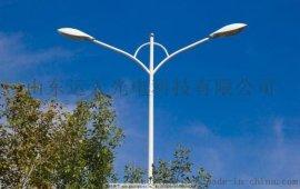 LED路灯,高杆灯,广场照明灯YTLD-100A