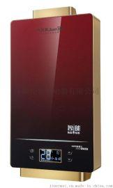 西藏豪华版九尔美强排燃气热水器苹果土豪金拉丝触摸-JSQ-JEM-17