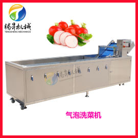 鼓泡清洗机 苹果浮洗机 现货供应