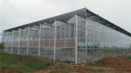 影响智能玻璃温室大棚的因素有哪些?
