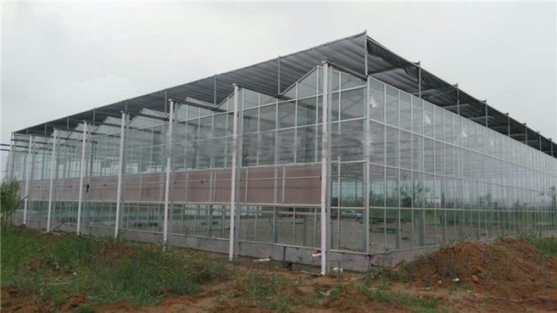 影響智慧玻璃溫室大棚的因素有哪些?