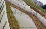 螞蚱養殖網 抗衰老  防氧化專用網箱