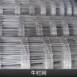 草原养殖铁丝防护网A伊宁草原养殖铁丝防护网厂家