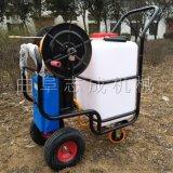 手推汽油动力消毒机 园林绿化喷药机