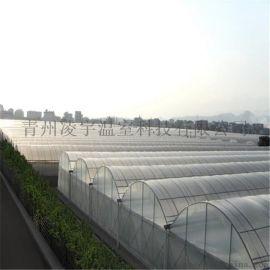 连栋薄膜温室 山东厂家 温室承建 温室材料
