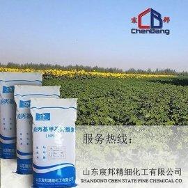 山东宸邦羟丙基甲基纤维素厂家供应安徽瓷砖胶用纤维素