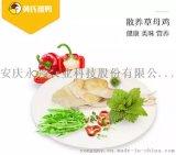 安庆草母鸡供应