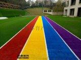 学校幼儿园免填充型人造草足球场施工建设厂家