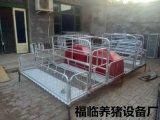 养猪场专业自动化料线自动料线养猪自动化料线猪场自动化料线