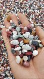 水磨石彩色石子价格 河北石家庄永顺彩色石子生产厂家